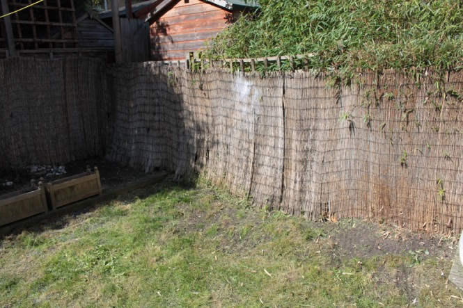 Right wall - after removal of unwanted vegetation